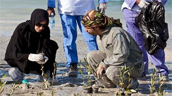 twofour54 plants mangroves at Saadiyat Lagoons District for Year of Giving